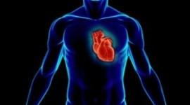 Παράξενες Πληροφορίες για το ανθρωπινο σώμα